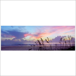 Tropical Gaze - Dawn Storm Wall Art - Wall Art