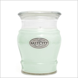 Salt City Candles - Vanilla Lime Candle Size: 285 grams - Candles & Candle Holders