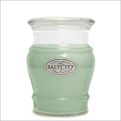 Salt City Candles - Mojito Ice Candle Size: 735 grams - Candles & Candle Holders