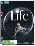 Life - New Packaging