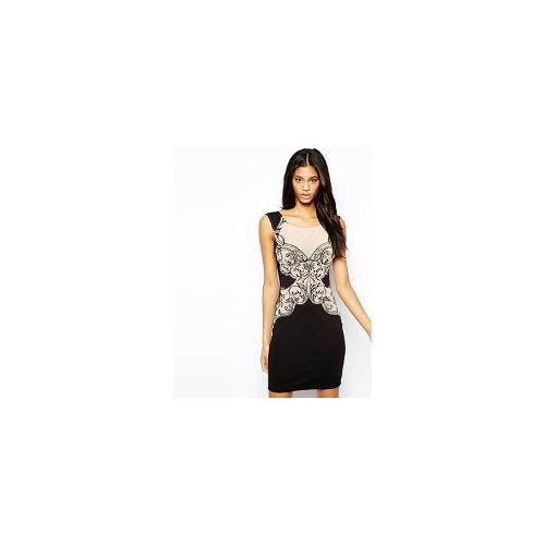 Lipsy Pencil Dress in All Over Lace Embroidery - Black/nude