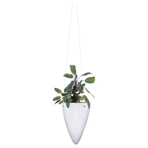 Patio by Jamie Durie 3 Piece Hanging Planter Set