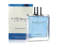 Perfume NZ Silver Shadow Atitude by Davidoff 100ml EDT