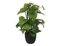 Briscoes NZ Artificial Climbing Potted Pothos Plant