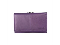 Briscoes NZ Condotti Ladies Framed Wallet Purple