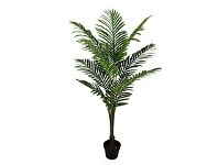 Briscoes NZ Pheonix Palm Artificial Plant 145x70cm