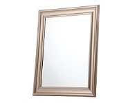 Briscoes NZ Rembrandt Wide Bevelled Framed Mirror Champagne 60x80cm