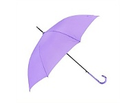 Briscoes NZ Peros Ladies Isabella Umbrella Purple