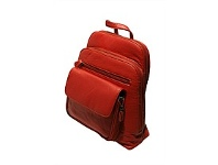 Briscoes NZ Hangbag/Backpack Red