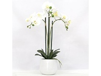 Briscoes NZ Real Touch Triple Spray Artificial Orchid