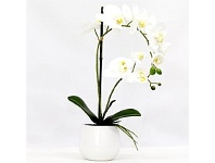Briscoes NZ Real Touch Double Spray Artificial Orchid