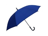 Briscoes NZ Umbrella Auto Open Shaft Handle Coloured Ribs Royal