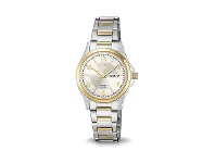 Bevilles Citizen Womens Two Tone Watch EQ0595-55A