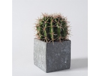LivingStyles Faux Ball Cactus in Concrete Effect Cube
