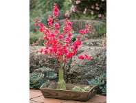 LivingStyles Artificial Cherry Blossom Miniature Tree with Wooden Tray - Hot Pink