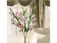 LivingStyles Set of 3 Six Head Artificial lilies - Hot Pink