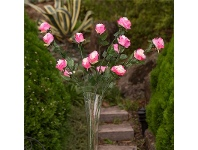 LivingStyles Set of 3 Five Head Artificial Roses - Pink