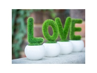LivingStyles L.O.V.E. Artificial Moss Creeper Set
