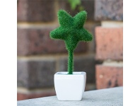 LivingStyles A Star of Artificial Moss in Pot