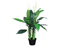 LivingStyles Artifical Spathiphyllum in Pot