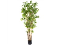 LivingStyles Artificial Japanese Bamboo Tree in Pot