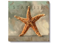 LivingStyles Bayport Stretched Canvas Wall Art Print, Starfish, Small