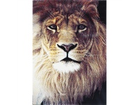 LivingStyles Iconic Lion Turkish Made Rug, 200x290cm