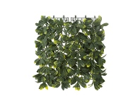 LivingStyles Artificial Laurel Leaf Wall Mat, 50cm