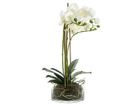 LivingStyles Artificial Orchid in Round Glass Vase, White