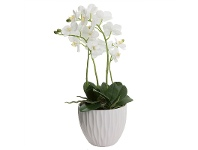 LivingStyles Artificial Orchid in Ceramic Pot, White