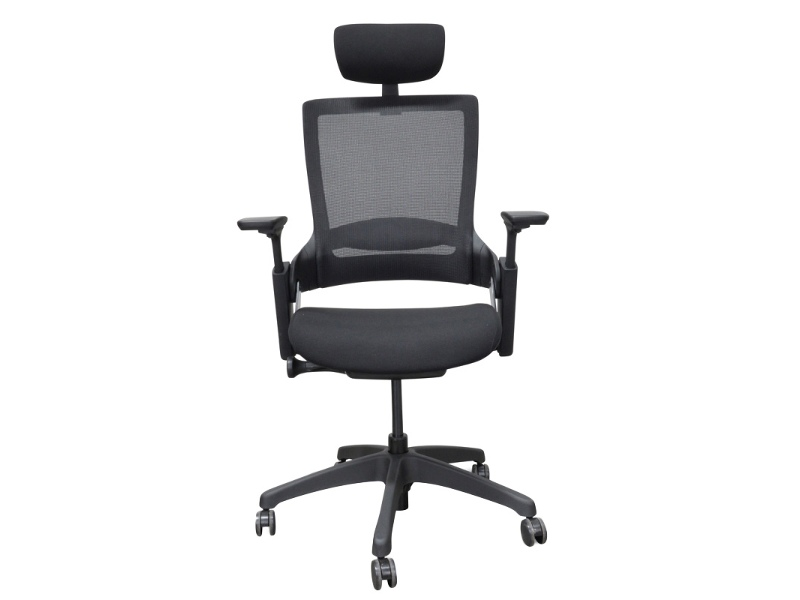 Merna Mesh Fabric Ergonomic Office Chair with Head Rest, Black