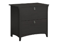 LivingStyles Salinas 2 Drawer Lateral File Cabinet