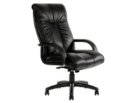 LivingStyles Statesman Leather High Back Executive Chair