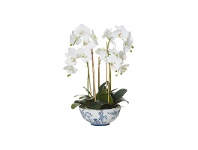 Aaliyah Bowl Potted Deluxe Artificial Phalaenopsis, Small
