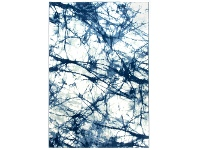 LivingStyles Chelsea Claire Modern Rug, 300x400cm