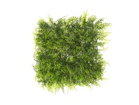 LivingStyles Artificial Fern Wall Mat, 50cm
