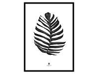 LivingStyles Noir Framed Wall Art Print, Monstera Leaf, 70cm, Black