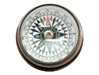 LivingStyles Handel Solid Brass Eye Compass