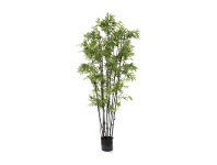 LivingStyles Potted Artificial Japanese Bamboo, Black Stem, 190cm