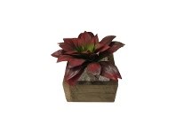 LivingStyles Northwood Potted Artificial Succulent, Echeveria Black Prince