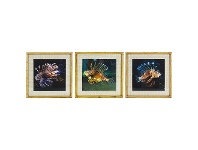 LivingStyles Chavez 3 Piece Bamboo Framed Wall Art Print Set, Lion Fish, 50cm