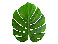 Living & Giving Annabel Trends Monstera Placemat 38x45cm