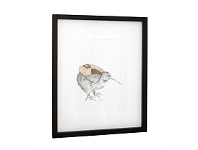 Living & Giving Kiwi Kev Framed Art Print