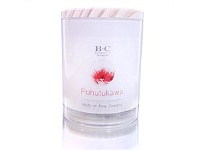 Living & Giving Banks & Co Pohutukawa Candle 700gm