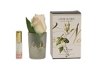 Living & Giving Fragrant Yellow Rose Bud In Gel 120ml