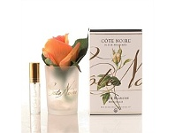 Living & Giving Fragrant White Peach Rose Bud In Gel 120ml