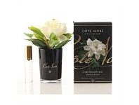 Living & Giving Fragrant White Gardenia Single In Gel