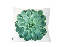 Living & Giving Green Succulent Square Cushion 55cm