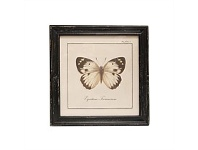 Living & Giving Single White Butterfly Wall Art