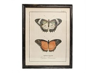 Living & Giving Double Butterfly Wall Art